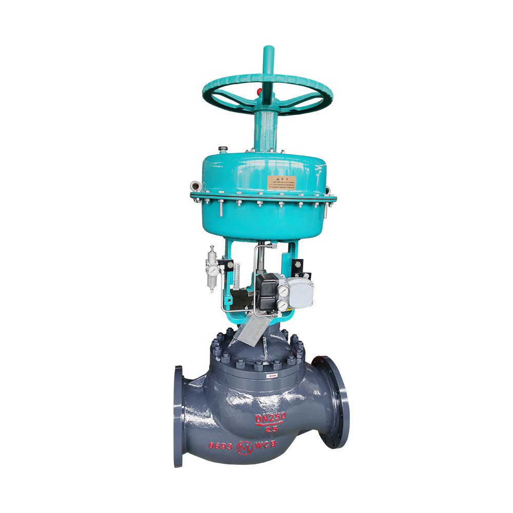 MD cage control valve