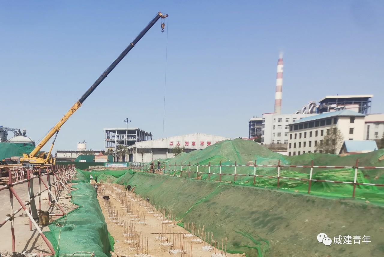 威海市委书记张海波调研威海港煤炭仓储中心项目