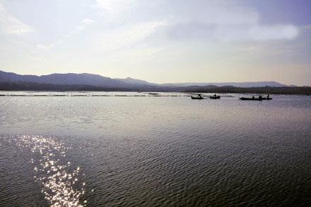 農業綜合開發臨沂沂水縣沙溝水庫中型灌區節水配套改造工程