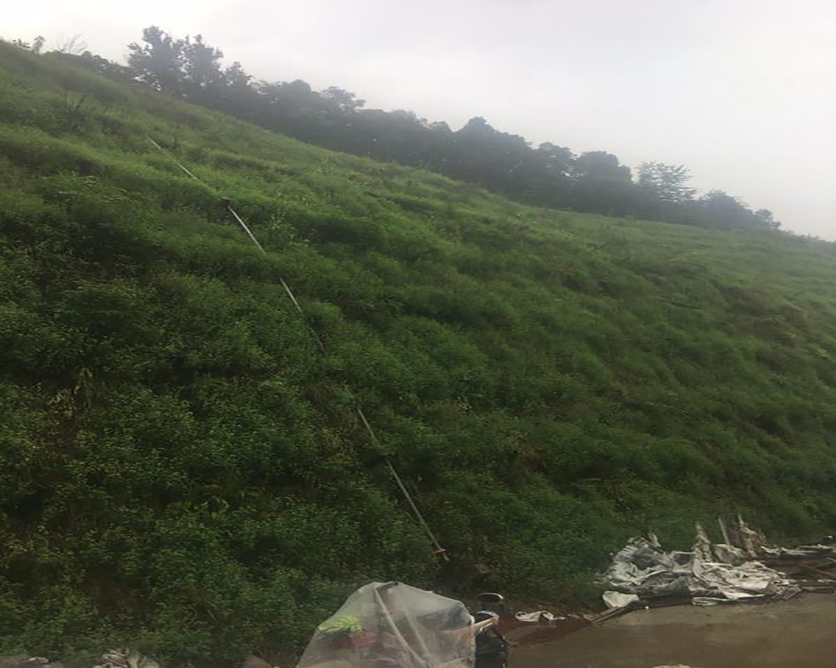 观云小镇二期挡土墙及边坡理治工程