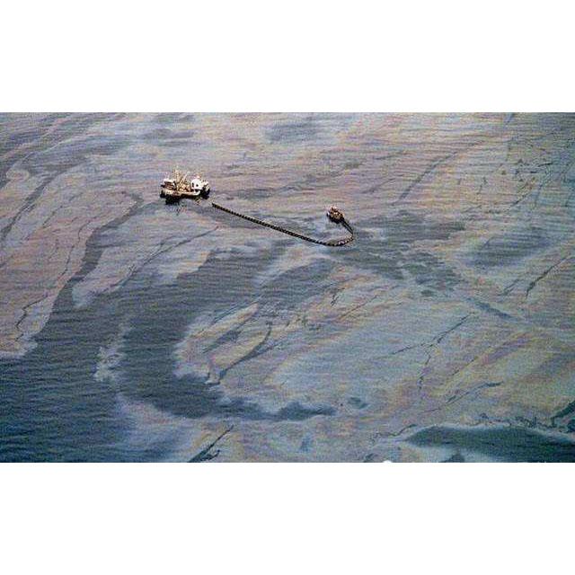 海洋原油泄露自吸轉子泵