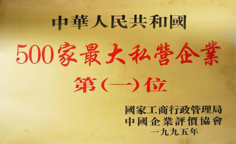 中国500家私营企业第一名
