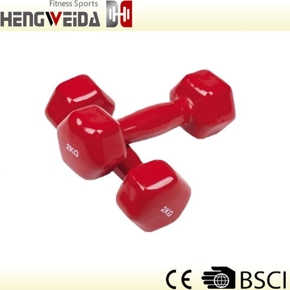 HWD2301-Vinyl Dipping Dumbbell
