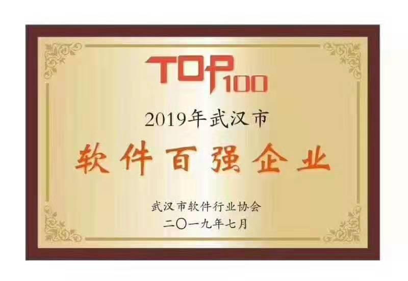 武汉市软件和信息服务业百强企业