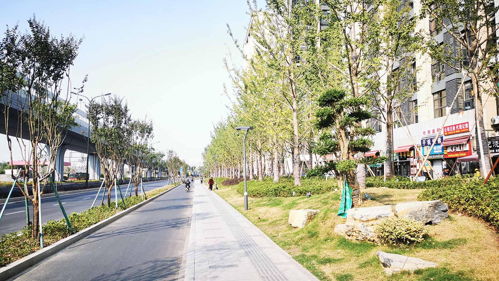 2019--迎宾大道改造提升工程(沪杭高速以南段)一标段
