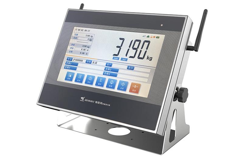 XK3190-DS12