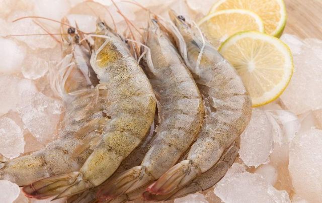 南美白对虾的养殖技术