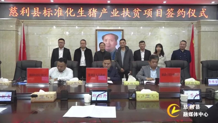 新五豐與慈利縣人民政府、湖南新林農牧科技有限公司簽訂標準化生豬產業扶貧項目