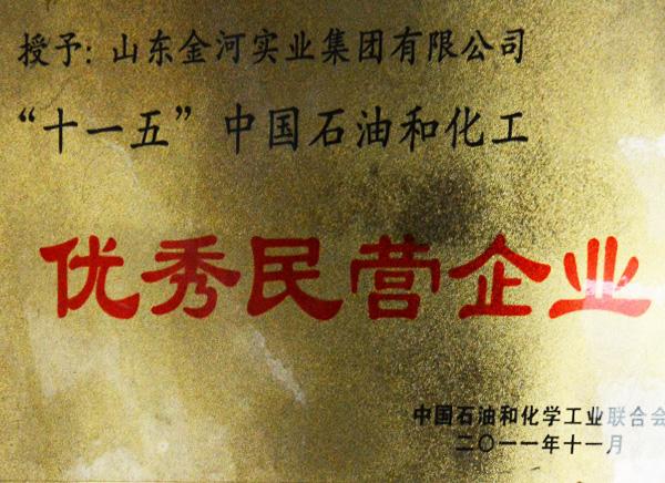 """""""十一五""""中國石油和化工優秀民營企業"""