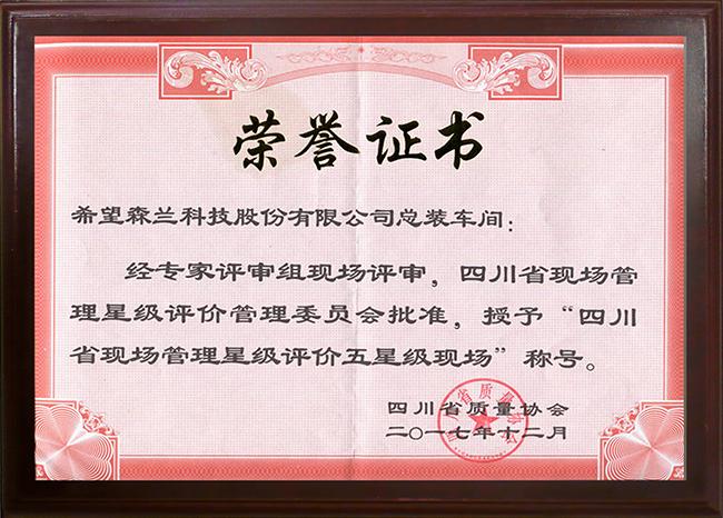 四川省现场管理星级评价五星级现场