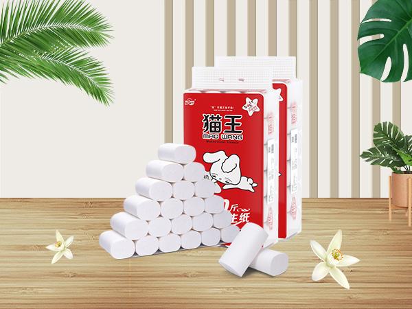 猫王10斤30卷家庭装(MJT04)