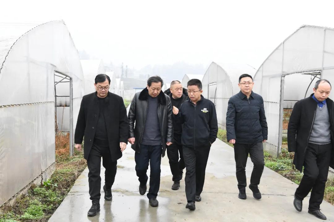 任建生大年初二到yabo官网羊肚菌产业基地慰问一线驻站人员