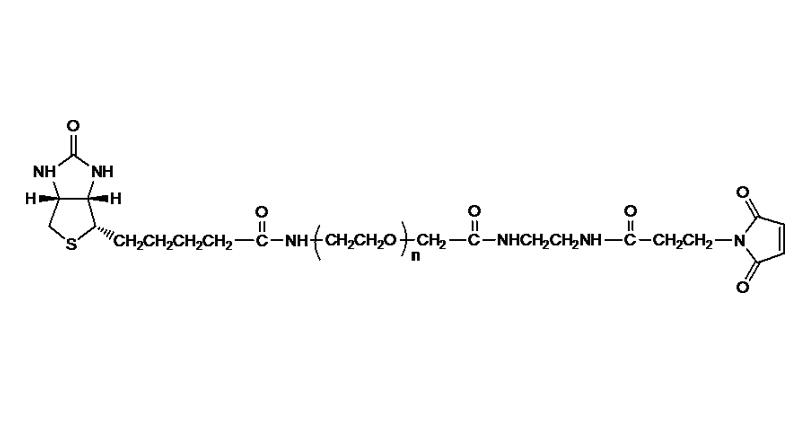 Biotin PEG Maleimide
