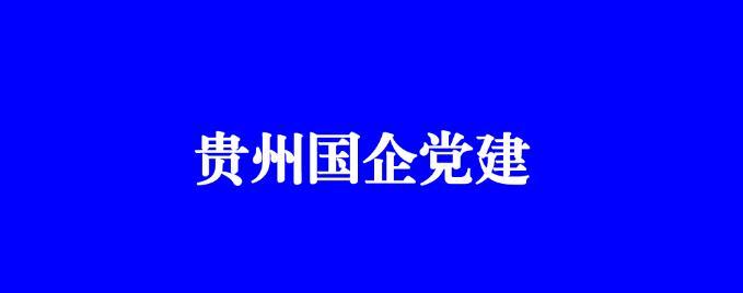 《貴州國企黨建》刊登貴鹽集團抓黨建推動企業轉型發展工作經驗
