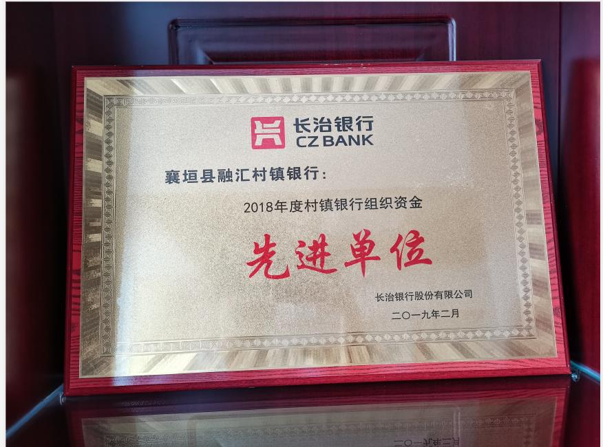 2019年2月 榮獲2018年度村鎮銀行組織資金先進單位