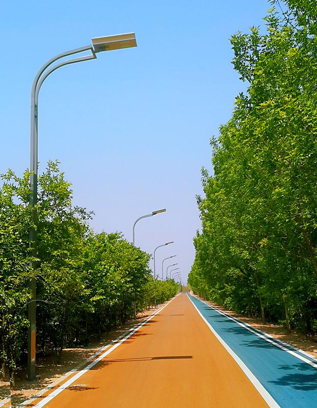 黄河生态廊道