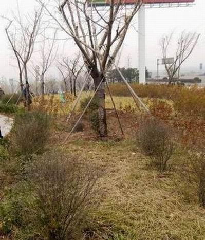 章丘繡源河