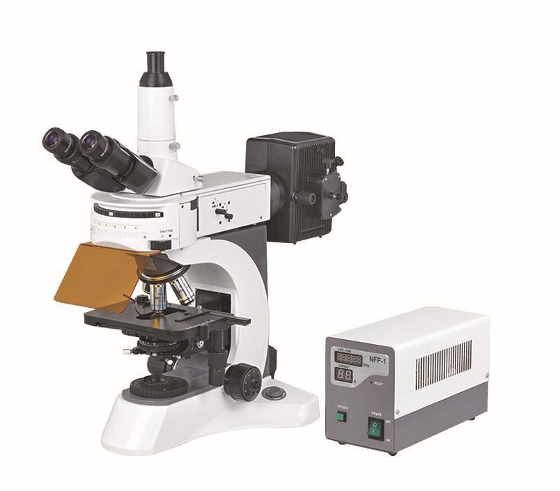 熒光顯微鏡