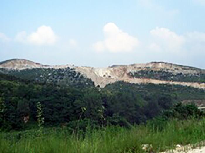 义煤集团水泥矿山工程