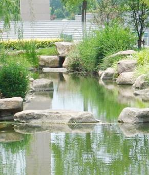 園林綠化工程服務