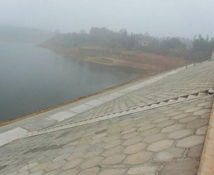通山縣2014年度一般小二型病險水庫除險加固工程