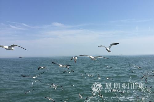 山東省農發行授信200億支持海洋生態文明建設