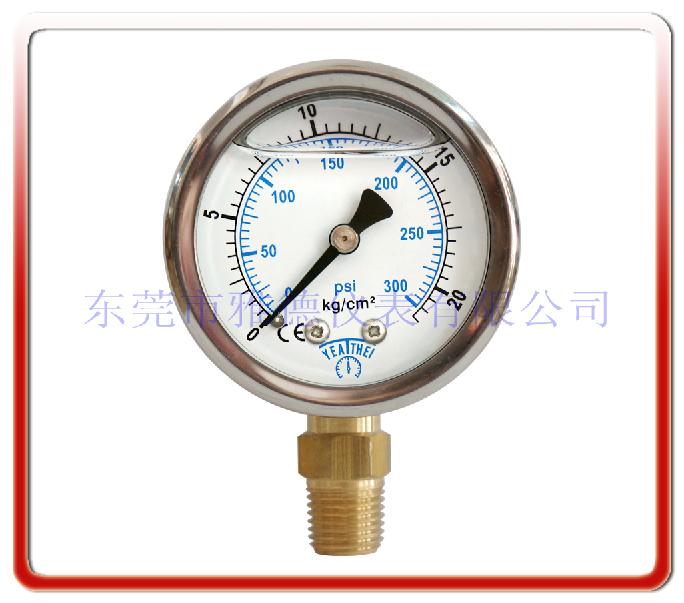 50MM徑向耐震油壓表
