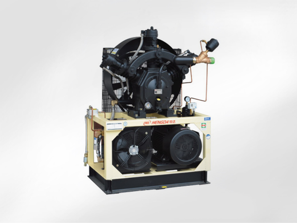 W-oil injection booster compressor
