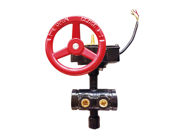 Backflow Butterfly Valve