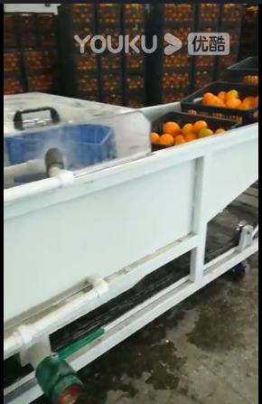 水果保鮮現場