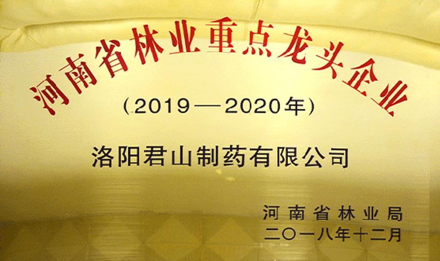 河南省林業重點龍頭企業