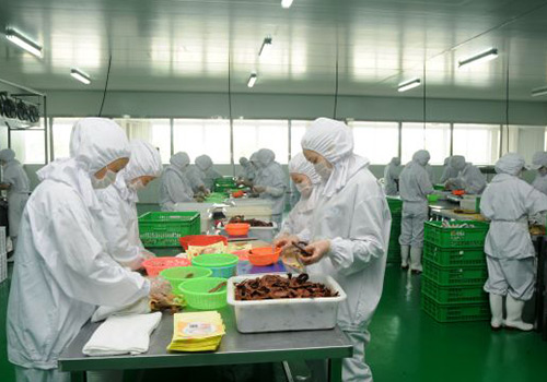 ozone application in Pharmaceutical,cosmetics,food processing factory