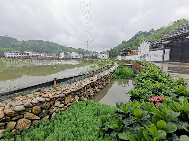 温州市泰顺县长垟村氮磷生态拦截沟渠改造工程