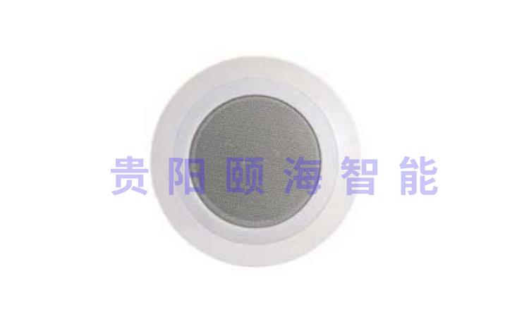 LED燈光定阻音箱帶高音