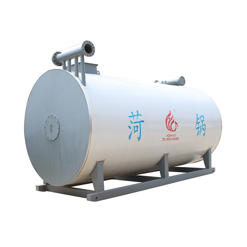thermal oil boiler china