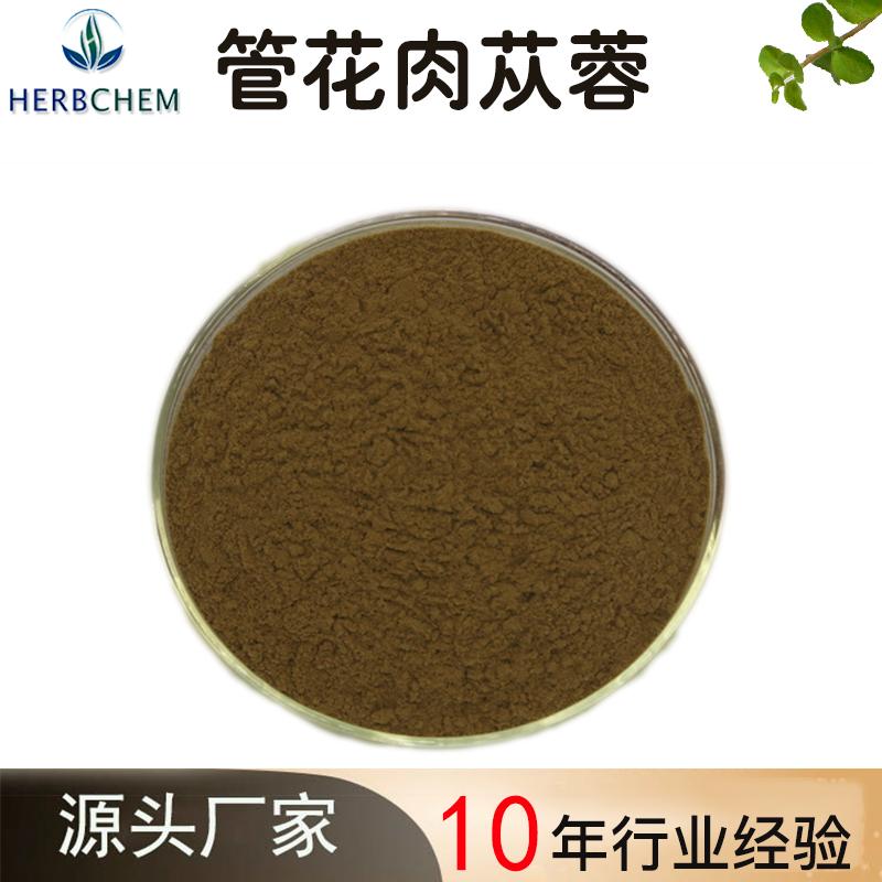 管花肉苁蓉:松果菊苷