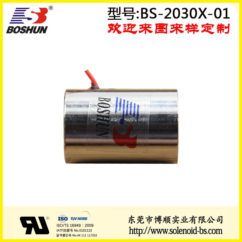 BS-2030X-01 生物医疗设备电磁铁