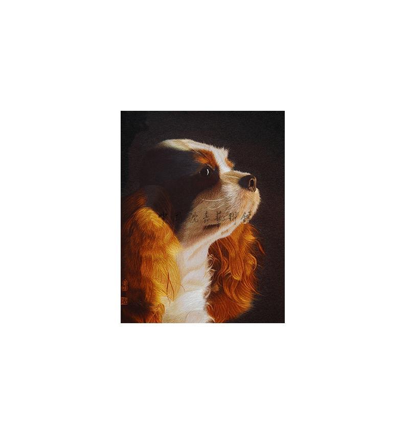 美國可卡犬
