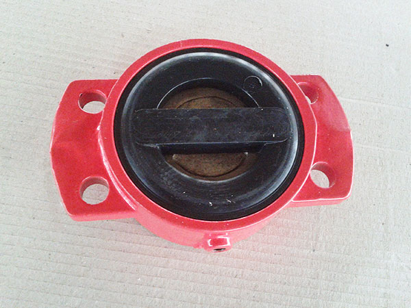 DIN rubber coated Non-return check valve