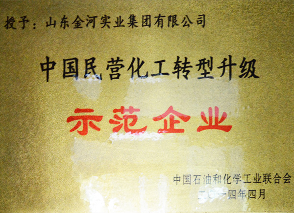 中國民營化工轉型升級示范企業