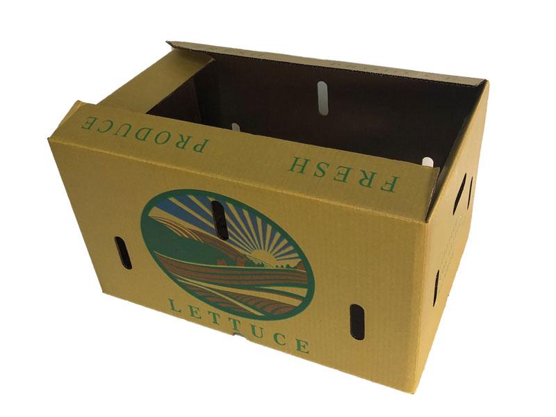 澳洲蔬菜纸箱(内含视频)