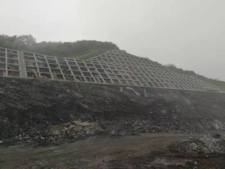 长春至深圳国家高速公路浙江省湖州扩容段2标路基边坡