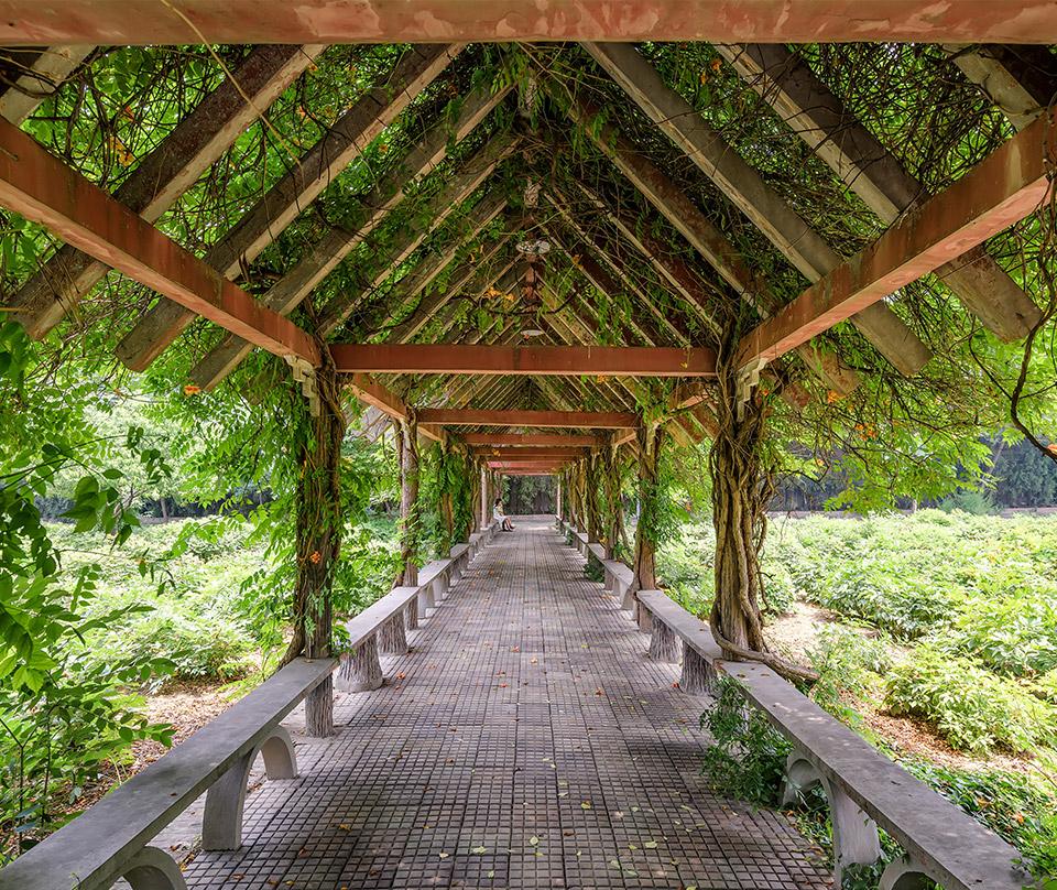 吉林省景峰園林景觀工程有限公司