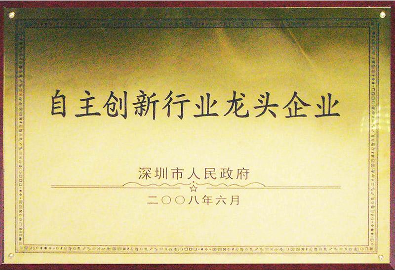 13.2 2008.6深圳市人民政府-自主创新行业龙头企业-