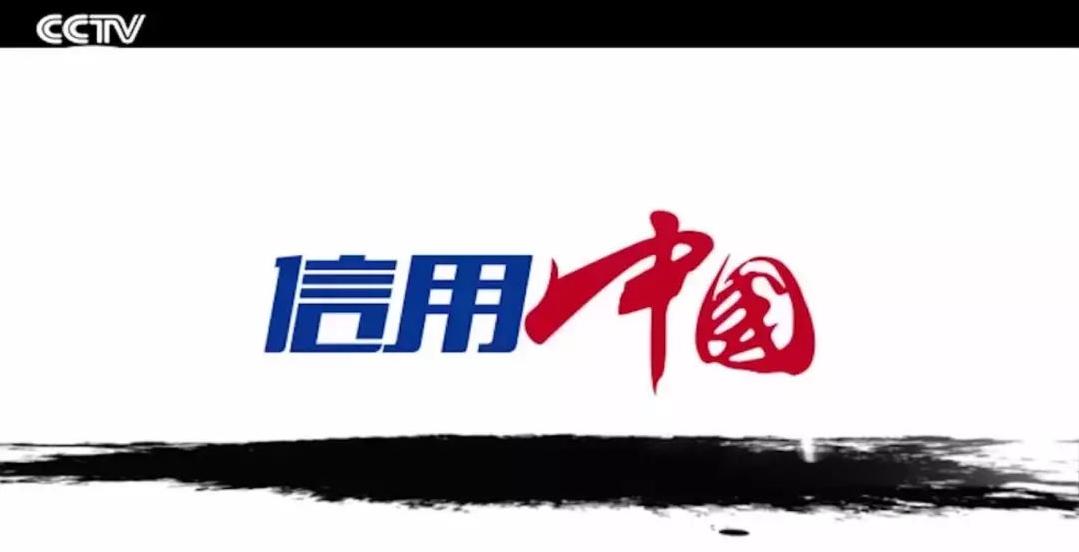 国柴科技走进央视CCTV《信用中国》栏目