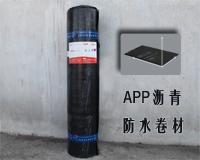 XJ-107 APP改性沥青防水卷材