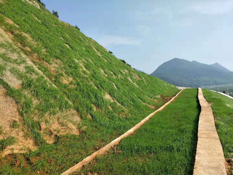 临海市上盘镇下畔村村民安置小区西侧边坡防护工程