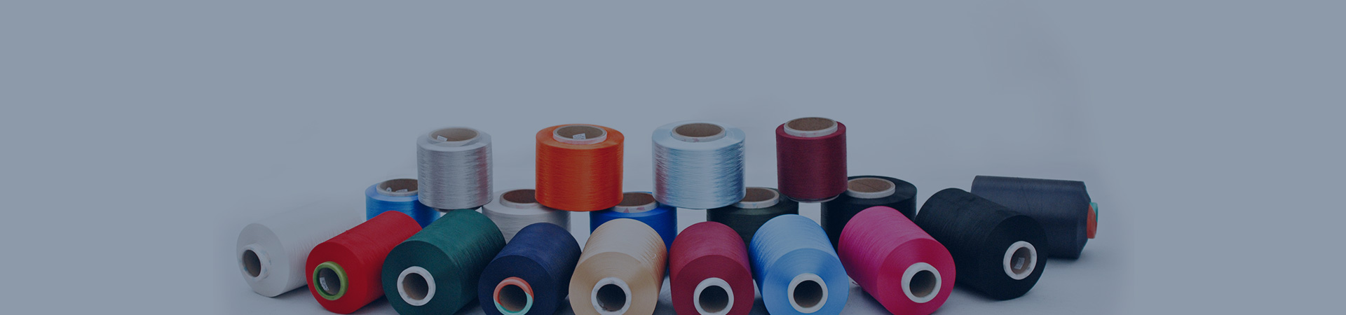 National nylon 6 functional fiber and fabric product development base