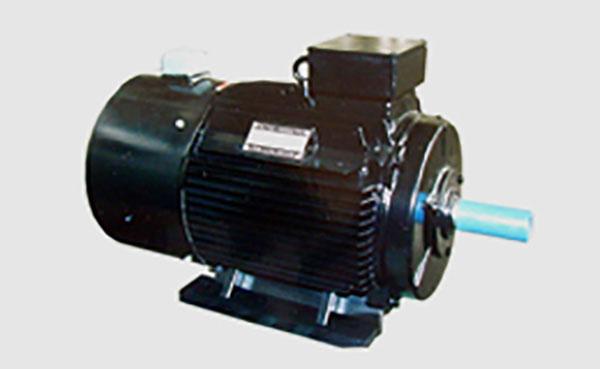 Y、YR系列10kV大型三相异步电动机