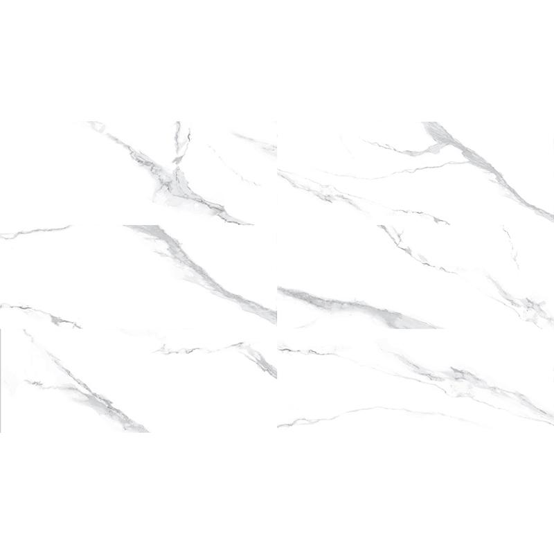 ZSP3801